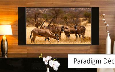 Paradigm Décor Custom Collection za ozvučenje televizora