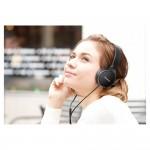 Panasonic slušalice RP-HF 300M